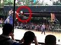 实拍大象练习投掷超远三分球
