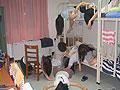 三层女生宿舍半夜被洗劫 学生疑被下迷药
