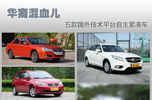 华裔混血儿 五款国外技术平台自主紧凑车