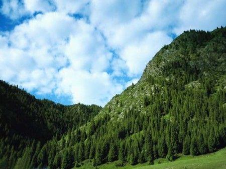 新疆各异自然风景