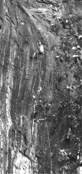 人就是从这个崖壁上被救下来的 救援人员在攀登悬崖