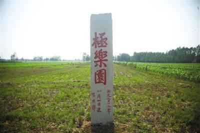 商水县的一处公益墓地,这块墓地已经复垦,和周边的农田连在一起。
