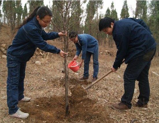 """登封市电业局组织开展""""与地球共迎春天""""为主题的植树节护绿活动"""