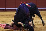实拍斗牛节选手被牛角顶翻 25人重伤