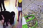 女子买iPhone被坑要退款 店员扔18斤硬币
