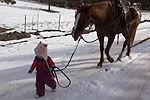 实拍美国2岁小女孩遛马 模样萌翻天