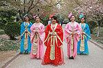农大美女大学生结伴穿古装赏樱花引围观