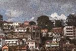 """马达加斯加首都上空被蝗虫""""黑云""""笼罩"""