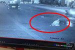 监拍福州民警开枪打野猪击中路边女子