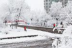 黑龙江鹤岗遇50年最强降雪 积雪已至膝盖