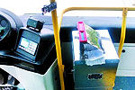 女子乘公交投13张百元钞 司机3次提醒未理