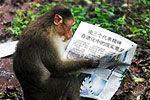 广州动物园招饲养员考马克思主义理论